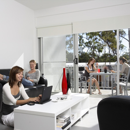 Welcome to campus living villages australia and new zealand - Griffith university gold coast swimming pool ...